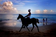 p121- Horse_BeachStCroixUP