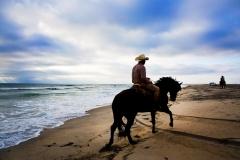 p133 - HorseBeachCAup