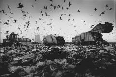 p67---landfill