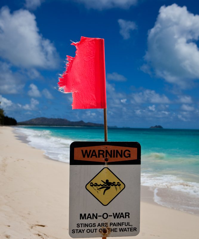 Even in Paradise : Kaiona Beach : Hawaii