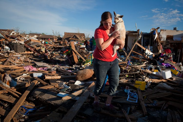 Rescue of Little Dog : Moore Tornado : Oklahoma
